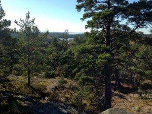 Fin utsikt vid Gålö naturreservat.