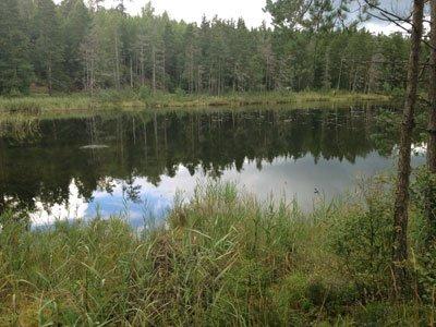 Den vackra kvarnsjön på Sörmlandsledens etapp 6
