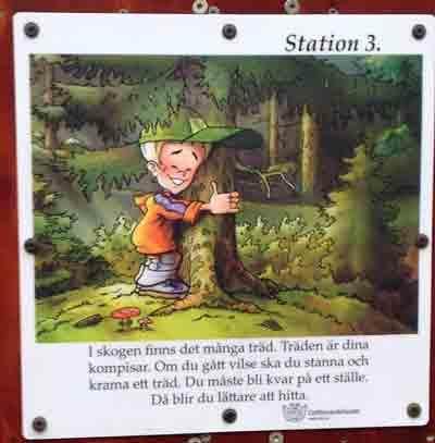 Station 3. I skogen finns det många träd. Träden är dina kompisar. Om du gått vilse ska du stanna och krama ett träd. Du måste bli kvar på ett ställe. Då blir du lättare att hitta.