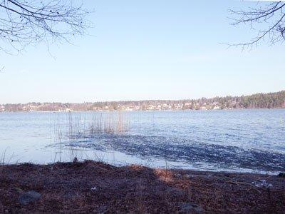 Mälarpromenaden går längs vattnet med fin sjöutsikt hela vägen.