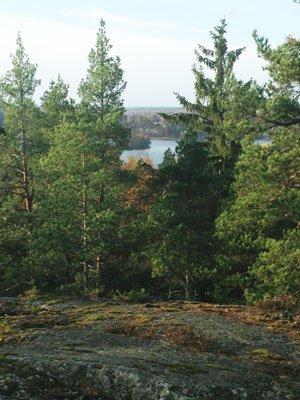 Korpberget utsikt