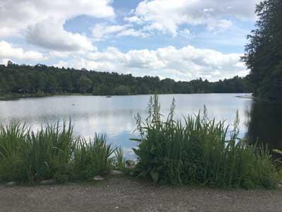 Sjö nära stockholm