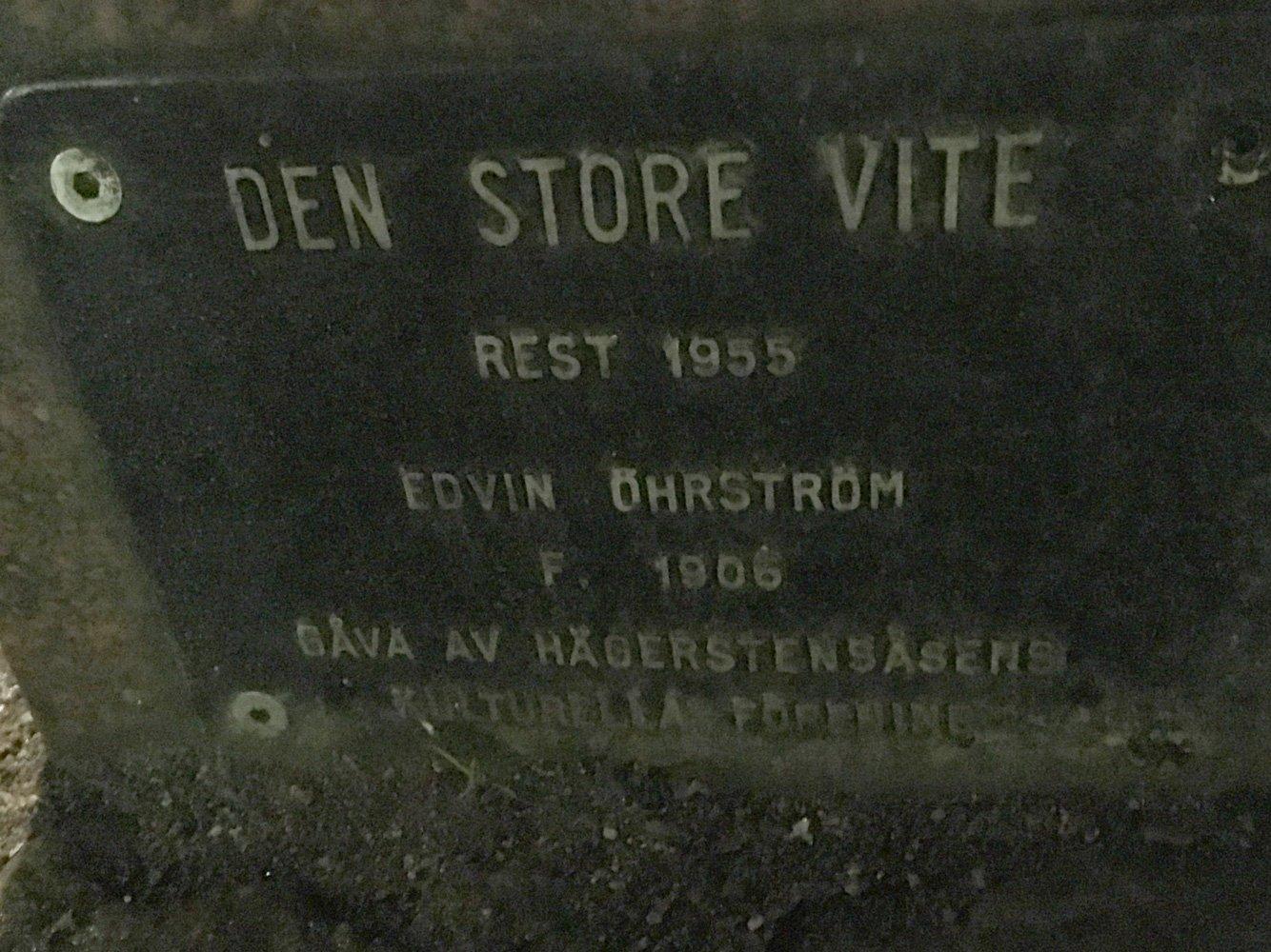 Den store vite, Edvin Öhrström, skulptur Västertorp