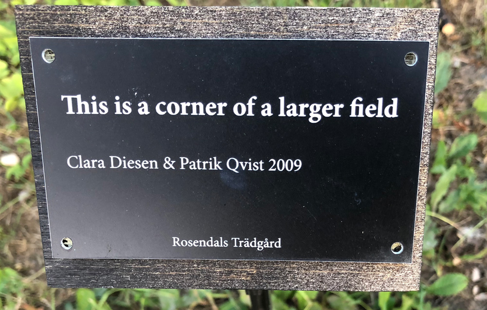 This is a corner of a larger field