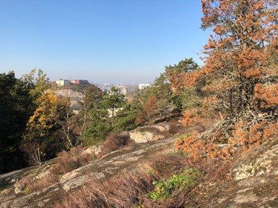 Utsikt Ryssbergen