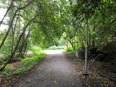 Lätta promenadstigar i Kyrksjölötens naturreservat.