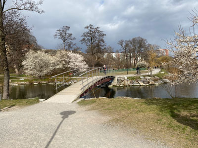 Park på Lilla Essingen