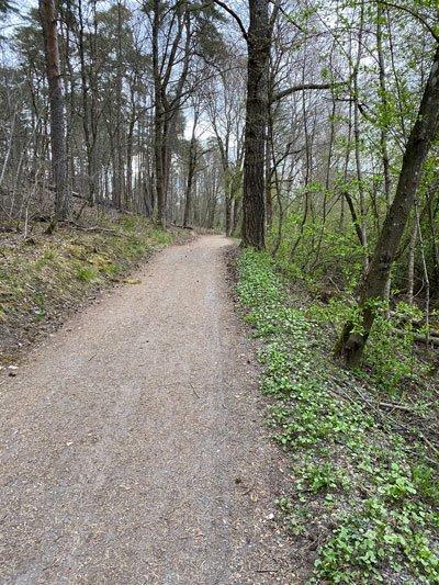 Norrviken grusväg
