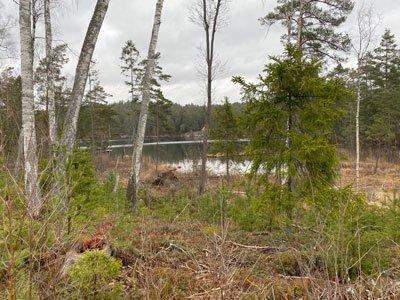 Sandasjön vid Sörmlandsleden
