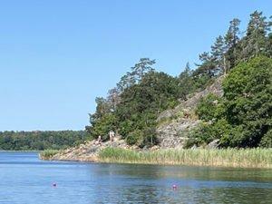 Klippbad i Brunnsviken vid Universitetet