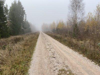 Upplandsleden etapp 31:1 går också längs skogsvägare.