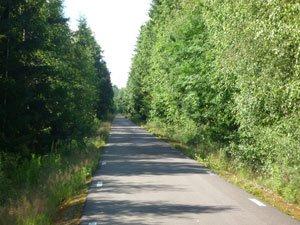 Värmländs skog på Klarälvsbanan.