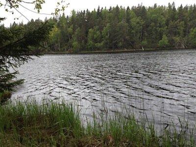 På Sörmlandsledens sträcka Segersäng till Hemfosa passerar man den vackra sjön Transjön.