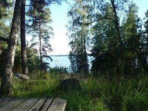 Utsikt från stugan i Grinda stugby.